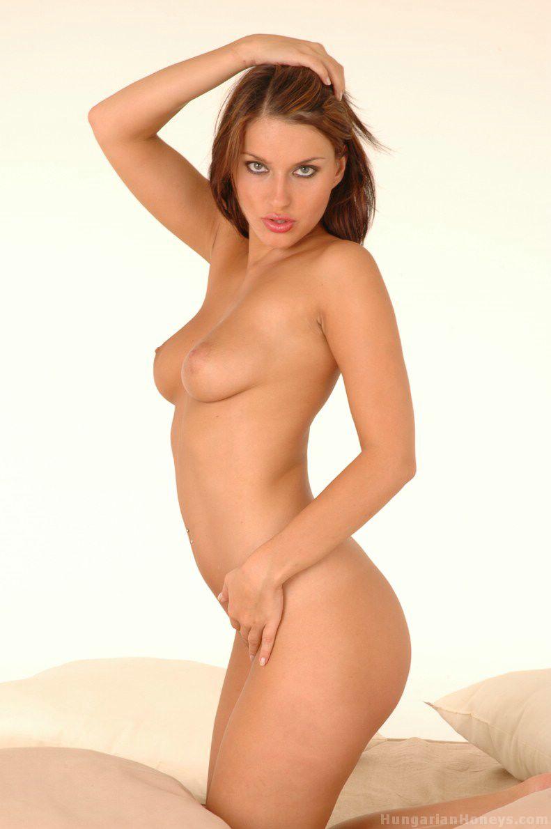 Free erotic shemale movies